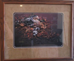 Print by Bruce Taylor