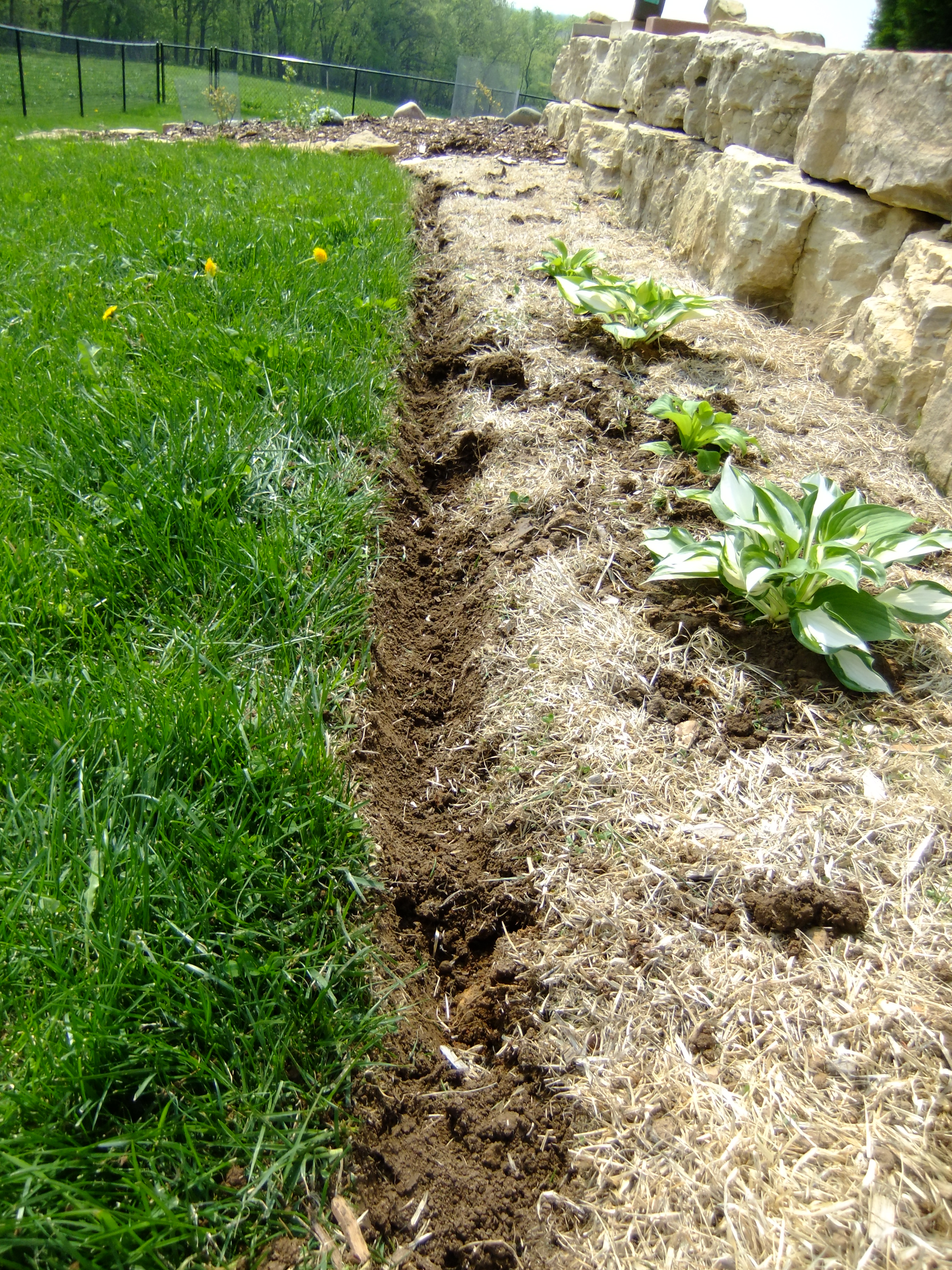 Garden bed trench garden ftempo for Edging flower beds with edger