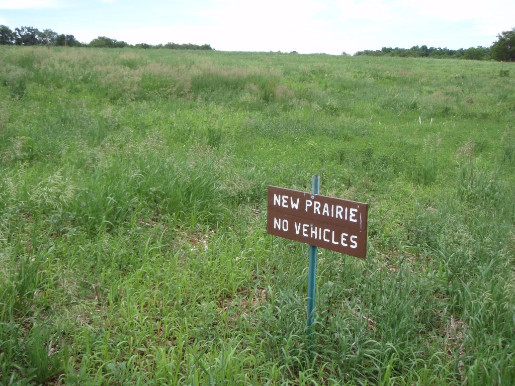 We created this sign so folks would know it was a prairie since the first year it doesn't look like much more than a field of weeds.