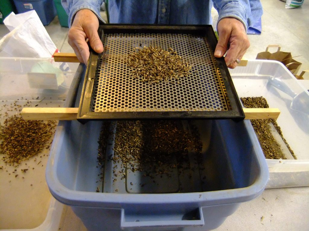 Using a screen to separate the seed from the chaff.