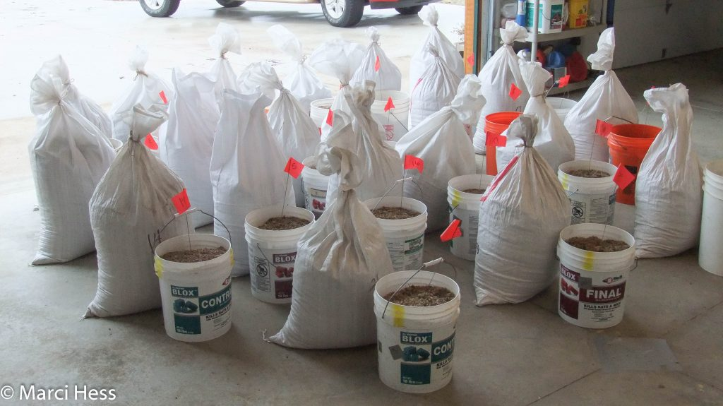 The buckets and additional seed for each sections.