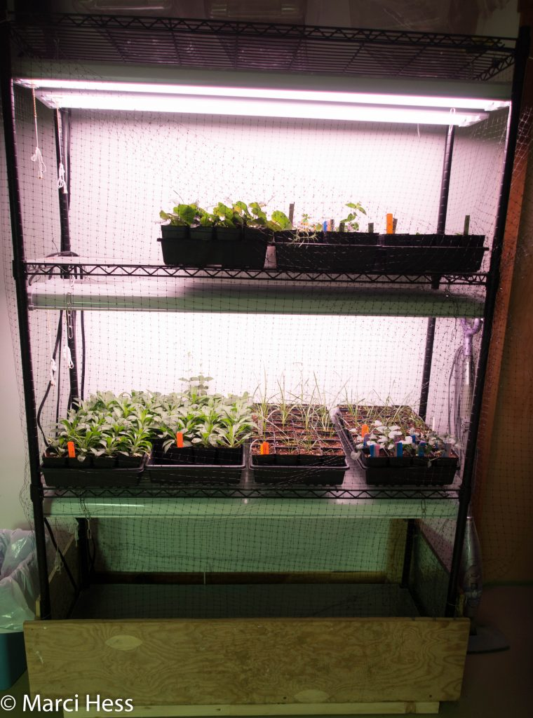 Propagation equipment