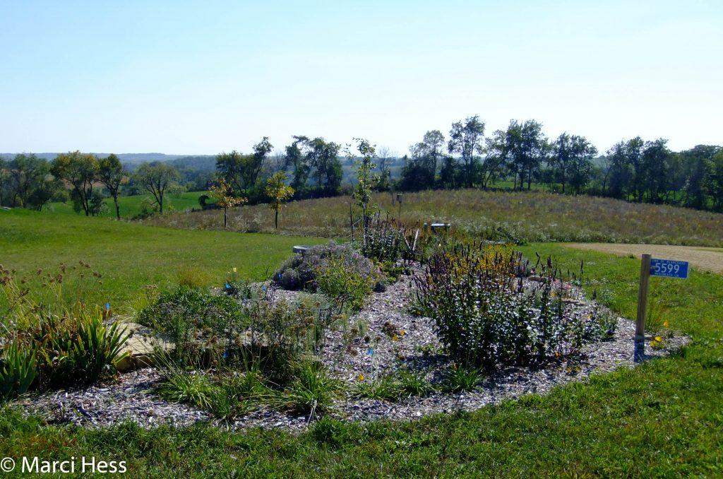 Propagation garden